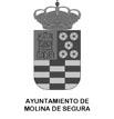 ajuntamiento-molina-segura-escudo